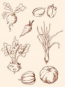 stock photo of root vegetables  - set of vector hand drawn vegetables in retro style - JPG