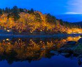 korankei Forest autumn park Nagoya Japan illumination poster