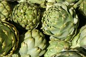 stock photo of gallstones  - A close look at organically grown artichoke in the California sunshine - JPG