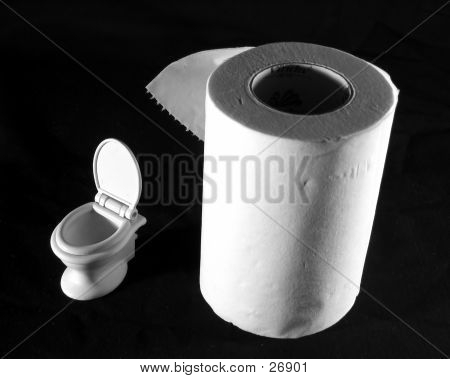 Mini Toilet And Giant Paper Roll
