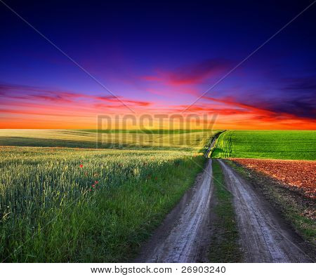 Beautiful sunset over field with green grass. HDR image