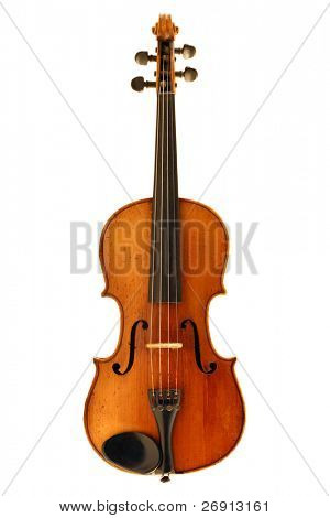violin isolated on white.