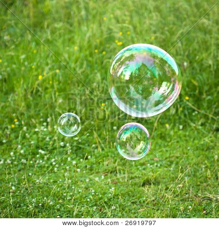 soap bubbles against the grass background