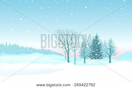 Christmas Background Snow Winter Landscape