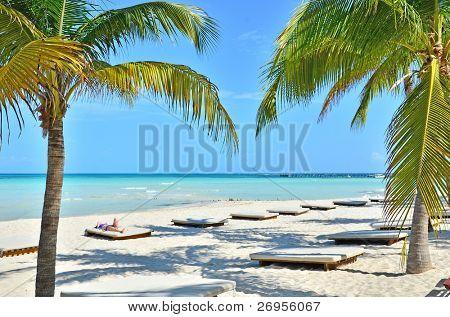 Caribbean beach (Isla Mujeres, Mexico)