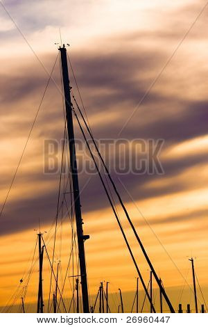 Mainmasts in the sunset