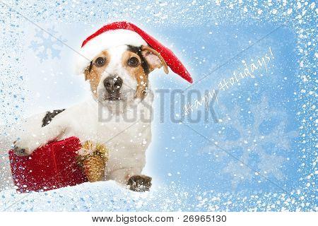 Postkarte mit lustigen Hund als Santa, Geschenk, Schnee Schneeflocken