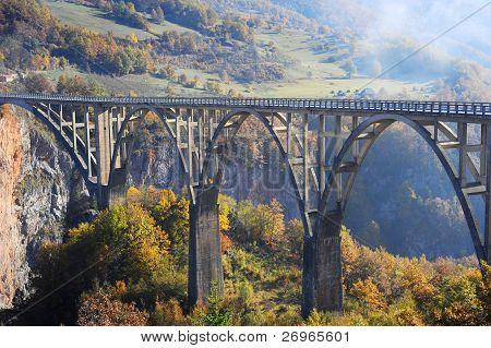 Puente de Tara Djurdjevica