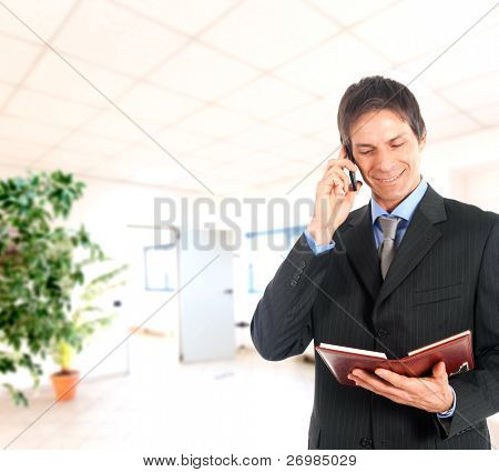 Businessman talking on a mobile phone while reading his agenda in an office environment