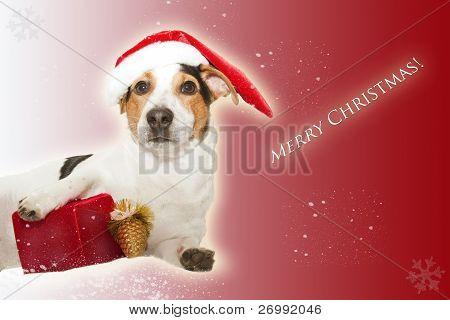Weihnachts Postkarte mit lustigen Hund als Santa und Geschenk