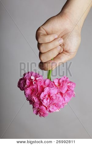 Image of the hand gives a bouquet of flowers in heart shape