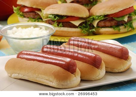 Couple Hotdogs,hamburgers and ingredients. Fast food composition.