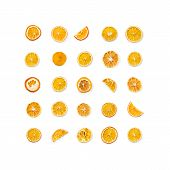 Set Of Dried Slices And Half A Slice Of Orange And Lemon As Background, Isolated On White Background poster
