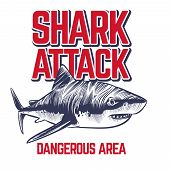 Wild Attacking Shark. Scary Jaws Of Shark. Vintage Ocean Surf T-shirt Sticker Vector Design. Shark A poster