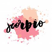 Scorpio Lettering Calligraphy Brush Text Horoscope Zodiac Sign Illustration poster