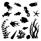 The Set Of Black Vector Silhouettes Of Different Sea Fish, Seahorse, Starfish, Jellyfish, Seashells, poster