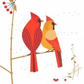 Birdwatching Icon. Red Northern Cardinal Couple Comic Flat Cartoon. Winter Birds Of Backyard, City G poster