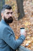 Drink It On The Go. Man Bearded Hipster Prefer Coffee Take Away. Businessman Bearded Guy Drink Coffe poster