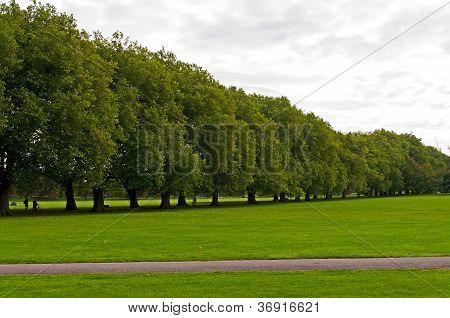 Jesus Green Park