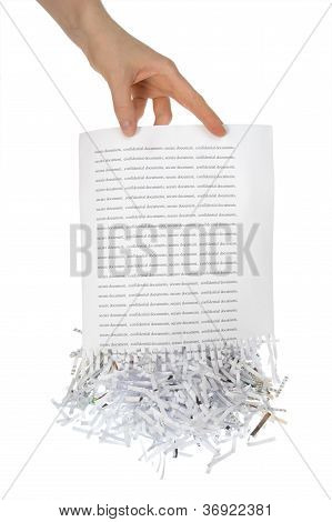 Shredded Paper In Hand