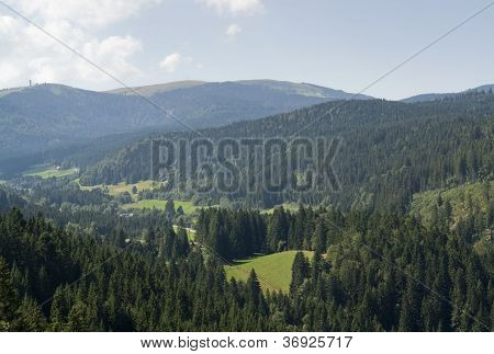 Aerial Black Forest Scenery At Summer Time