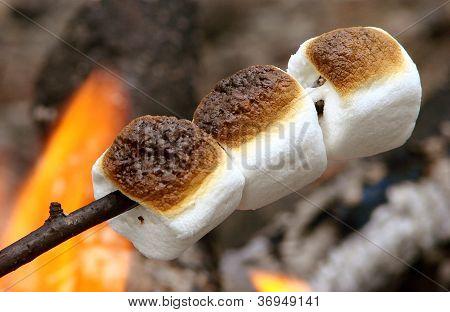 three marshmaloows roasting