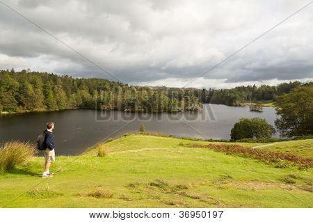 View Over Tarn Hows In English Lake District