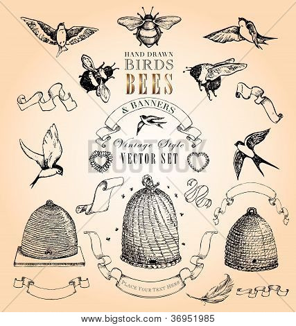 Vintage Style Birds, Bees & Banners Vector Set