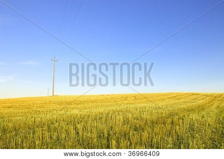Harvested Wheat Field, Electric Power Line And  Blue Sky
