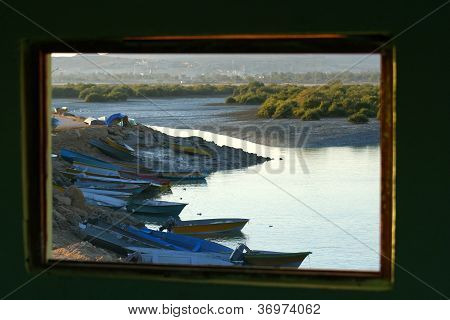 Window with a view of mangrove forest