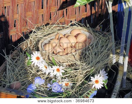 Eggs on hay