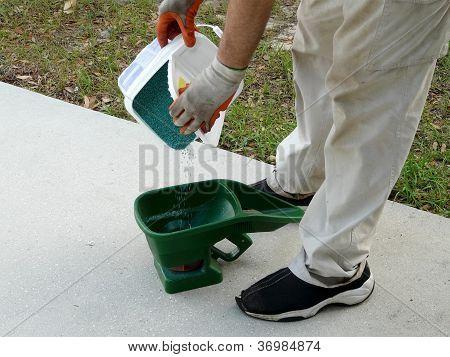 Preparación de la semilla de la hierba