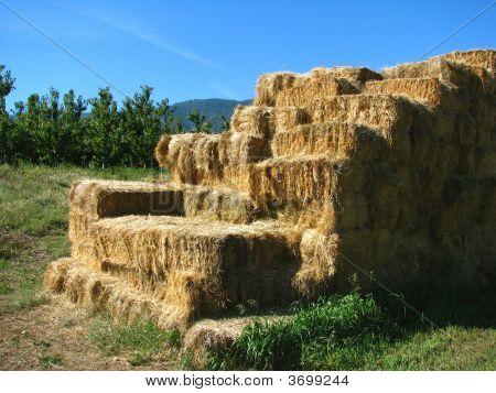 Harvest Hay Stack