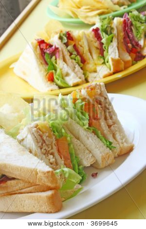 Group Of Cut Toasted Sandwiches