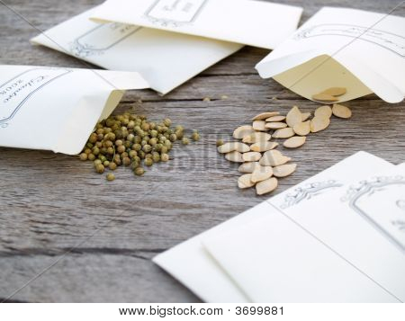 Seeds In Baggies