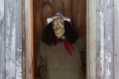 picture of outhouses  - Autumn Scarecrow peeking out from a outhouse - JPG