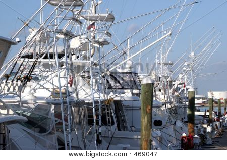 Fishing Boats In A Marina