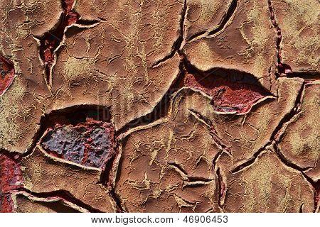 Cracks On Paint