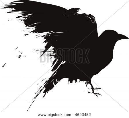 Grunge Vogel Crow raven