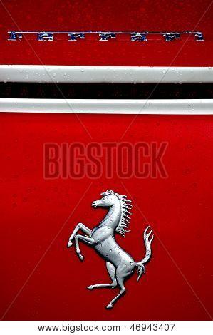 Ferrari Logo & Prancing Horse
