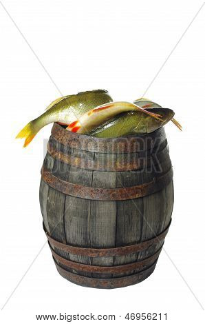 barrel with fish
