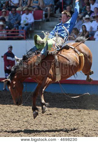 PRCA vaquero Royce - Rodeo acción
