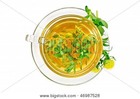 Herbal Tea With Rhodiola Rosea Top