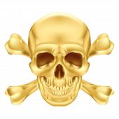 image of gold tooth  - Gold Skull and Crossbones - JPG