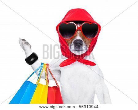 Shopaholic Diva Dog
