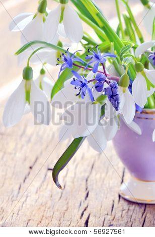Snowdrops In A Vase
