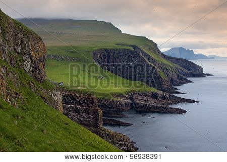 Green Meadows And Giant Sea Cliffs Overlooking The Ocean