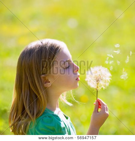 Blond kid girl blowing dandelion flower in green meadow outdoor profile view