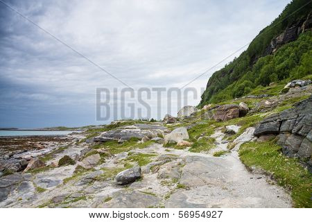 A Path Near The Sea In Northern Norway