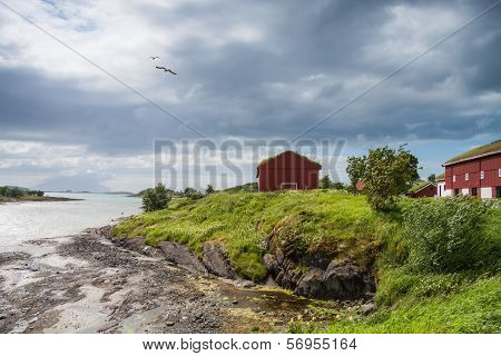 Houses Near The Sea With Lowtide, Norway